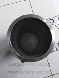 Cylinder Liner Kit-2881719 (1)