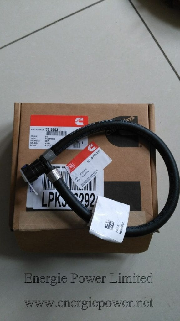 Flexible Hose-5318803