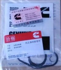 Oil Cooler Core Gasket-4973532