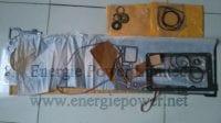 Upper Engine Gasket Set-4955595