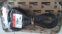 V Ribbed Belt-3254057 (3)