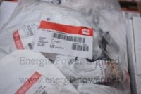 Injector Seal 3909886