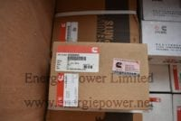 Main Bearing Set 4955855