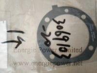 Fuel Pump Gasket 3069103
