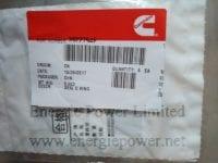 O-Ring Seal 3922794