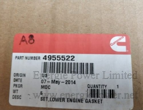 Kit, Lower Engine Gasket 4955522